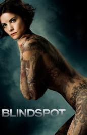 Blindspot Temporada 1 audio español