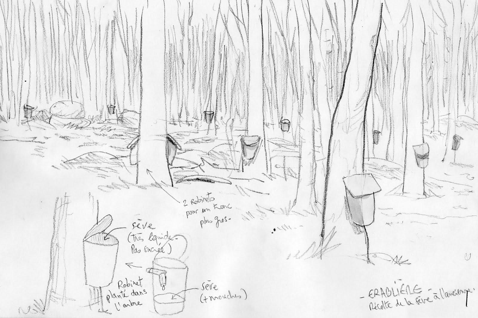 Croquis de voyages trip sketches didier millotte mai 2011 - Dessin de cabane ...