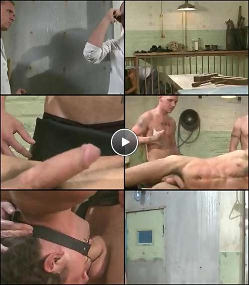 muscle gay videos free video