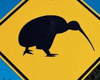 Kiwis en danger