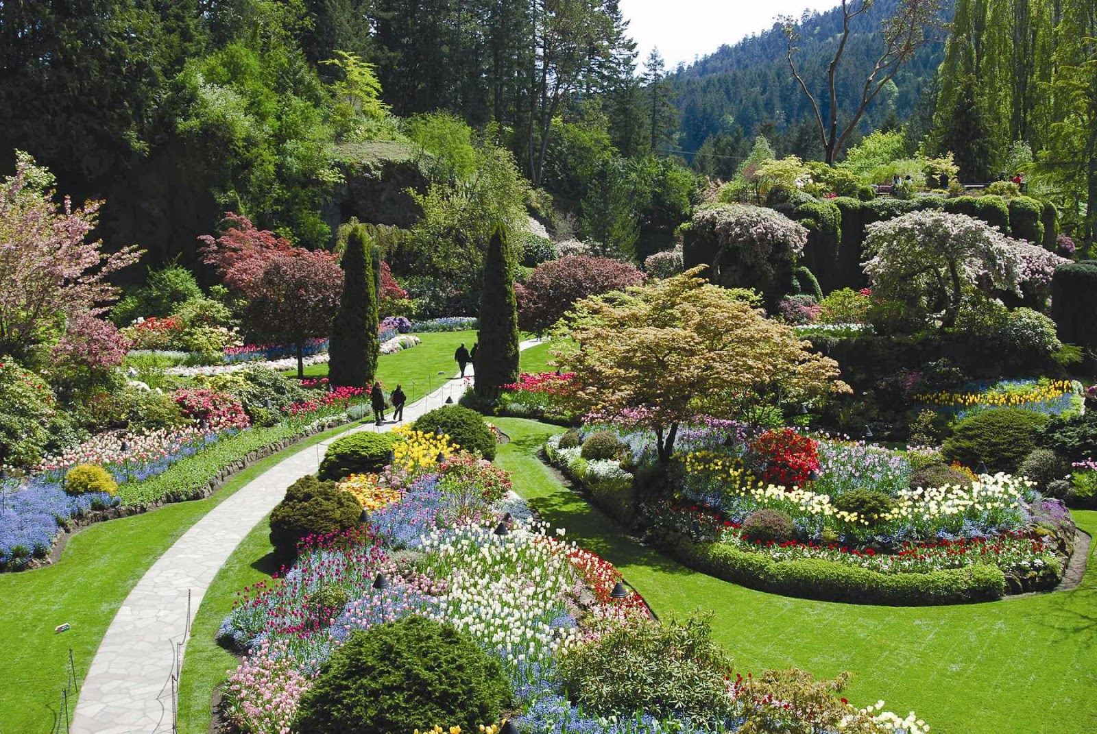 Travel Trip Journey Butchart Garden Canada