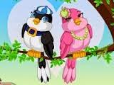 Kuş Gözetleyen Kız Giydirme Oyunu