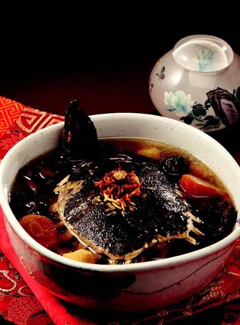 Cordyceps militaris terrapin soup