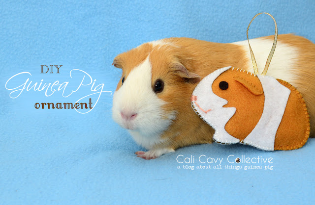 Peaches with felt guinea pig Christmas ornament