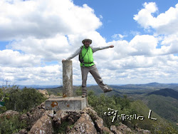 Pico Era