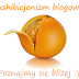 Blogowy ekshibicjonizm, czyli poznajmy się lepiej
