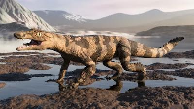 Araripesuchus replica