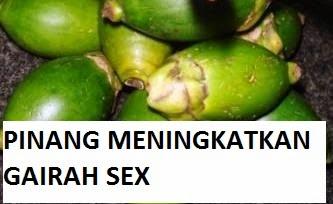 pinang untuk sex dan kesuburan pria