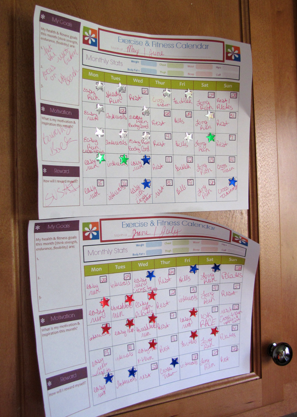 Training Plans Displayed on my Cabinets