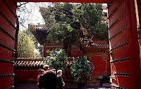Forbidden City Emperor's Garden