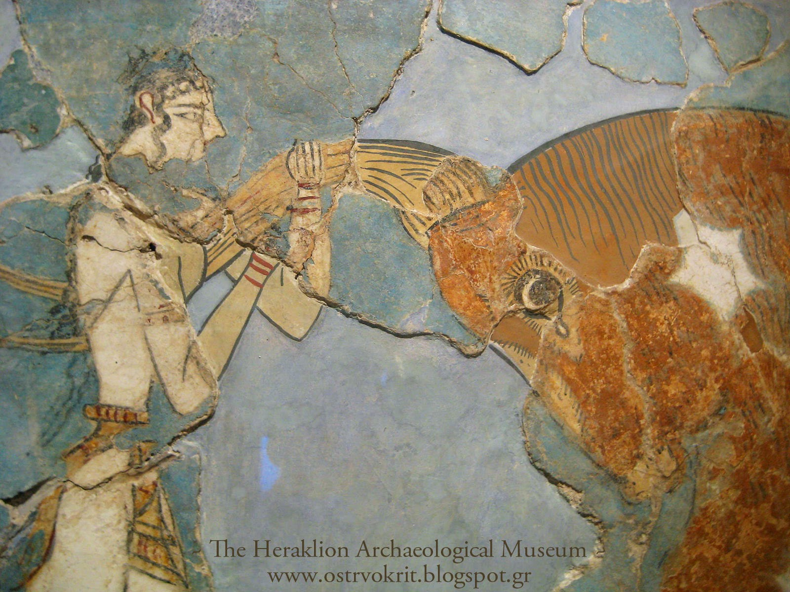 Bull leaping fresco(1600-1450 BC) from Knossos palace, acrobats leaping across a bull