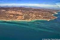"""""""Cabo Dorado"""" la nueva amenaza"""