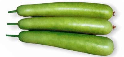 Calabash or Bottle Gourd