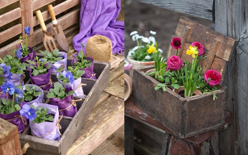 Ideas para decorar con macetas flor de capomo for Ideas para decorar macetas
