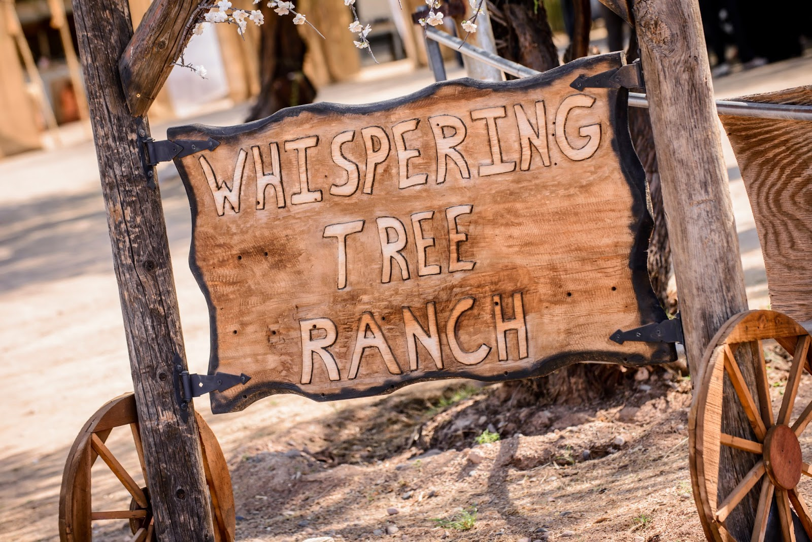 weddings at whispering tree ranch