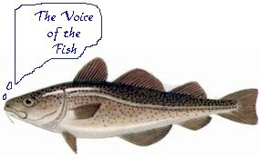 The voice of the fish coincidence