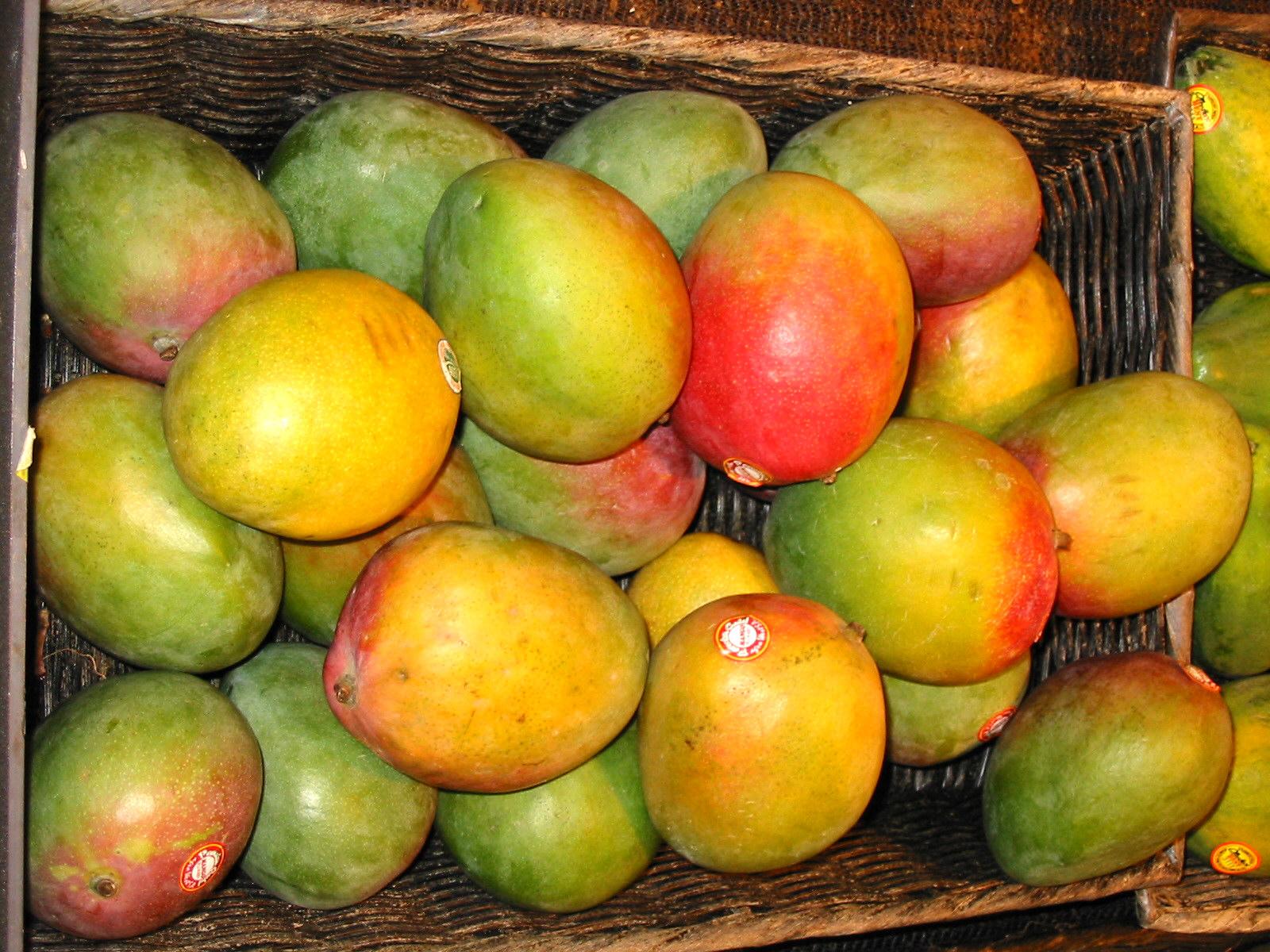 Secretos para cocinar sano y sabroso mangos for Cocinar con mango