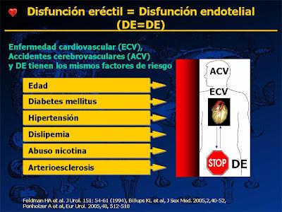 Disfunción eréctil y disfunción endotelial