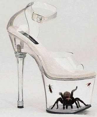 Scary Shoes, Perspex Heels