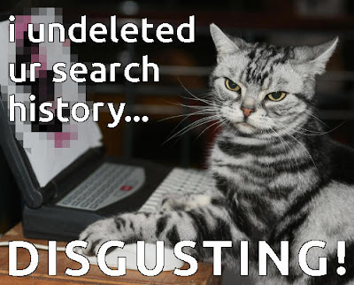 funny cat computer search browser history