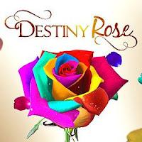 Destiny Rose February 8 2016