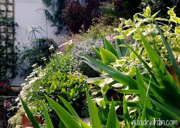 Saca el mayor partido a tu jard n guia de jardin - El jardin de lola ...