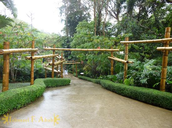 Path to Mae Fah Luang Garden of Doi Tung Royal Villa