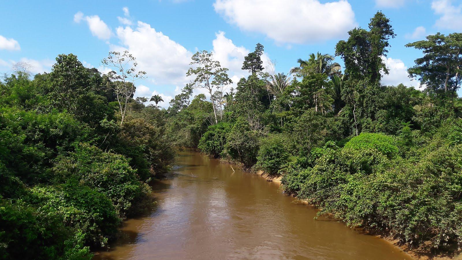 RIO URUARÁ