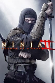 Film Ninja Shadow Of a Tear 2013 Bluray