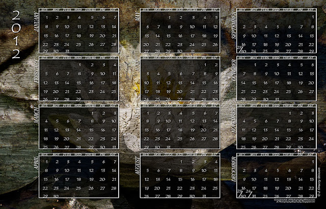 printable 2012 calendar with dark waterlily background in jpg format