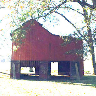 Kentucky's Tobacco Barns