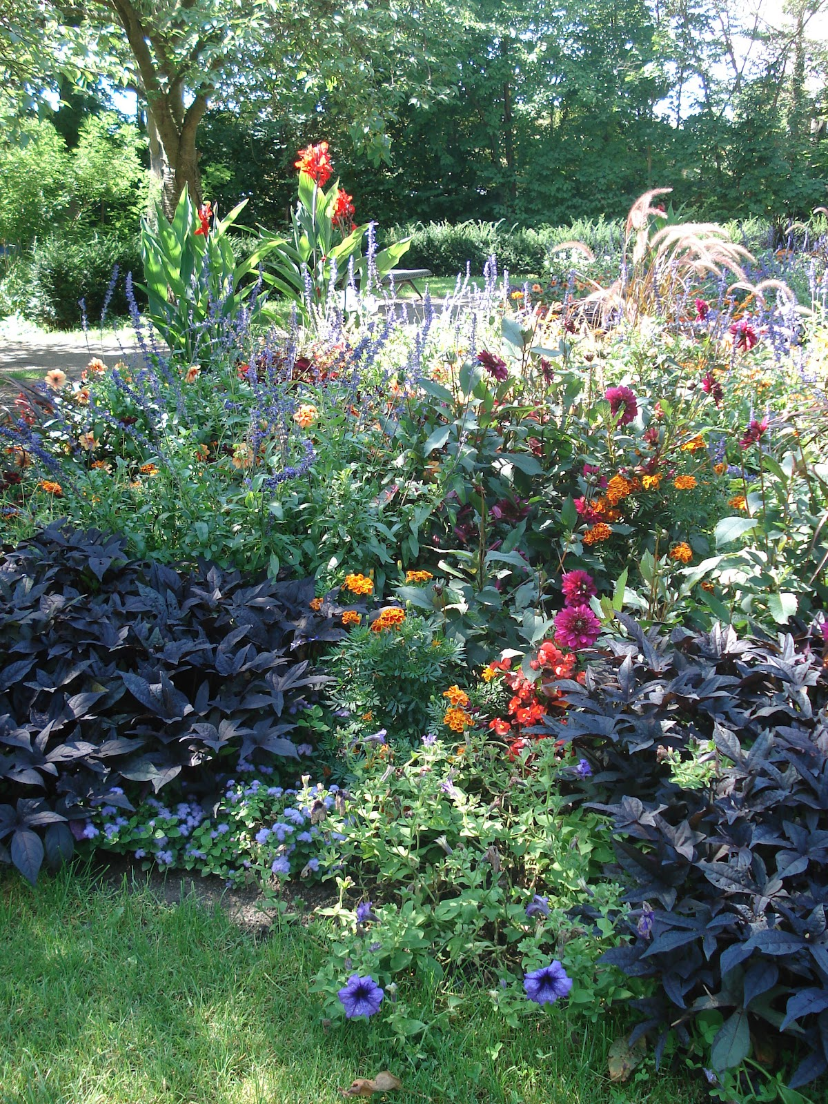 tra orto e giardino: ottobre 2012