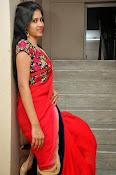 actress om sizzling photos in saree-thumbnail-60