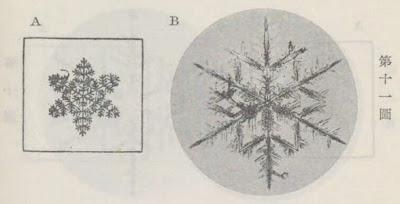 『雪華図説』の研究 模写図と顕微鏡写真と比較 第十一図