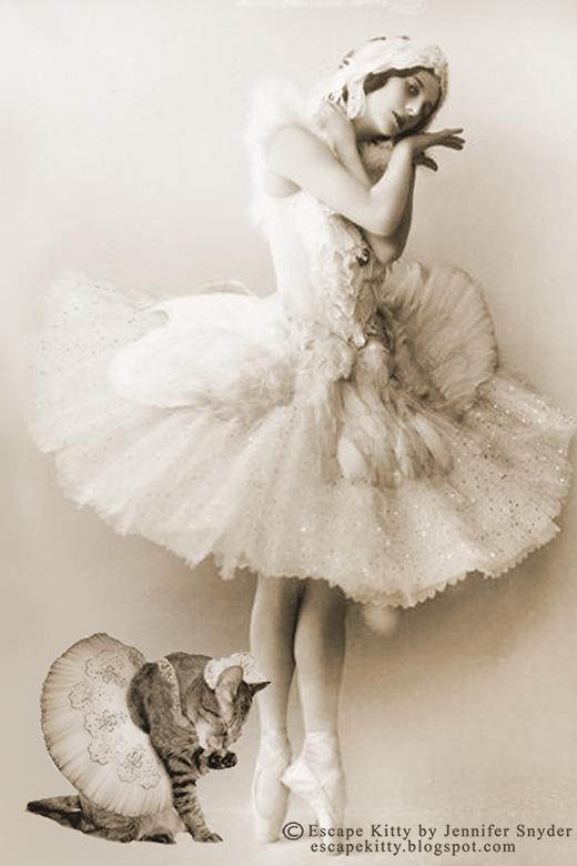 Kitty Swan
