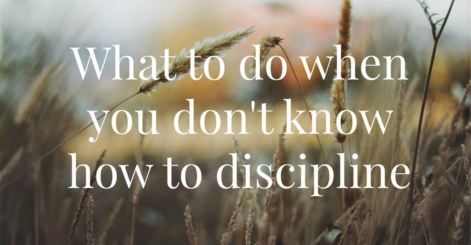What to do when you don't know how to discipline [from the jensens blog]