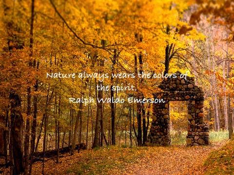 A Seasonal Thought