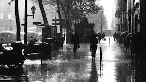 RAINFALL: A CITY STREET