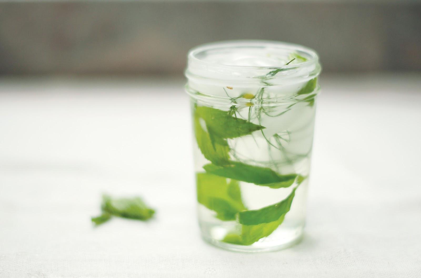 ... mint frosting start the week right real fresh mint tea fresh mint tea