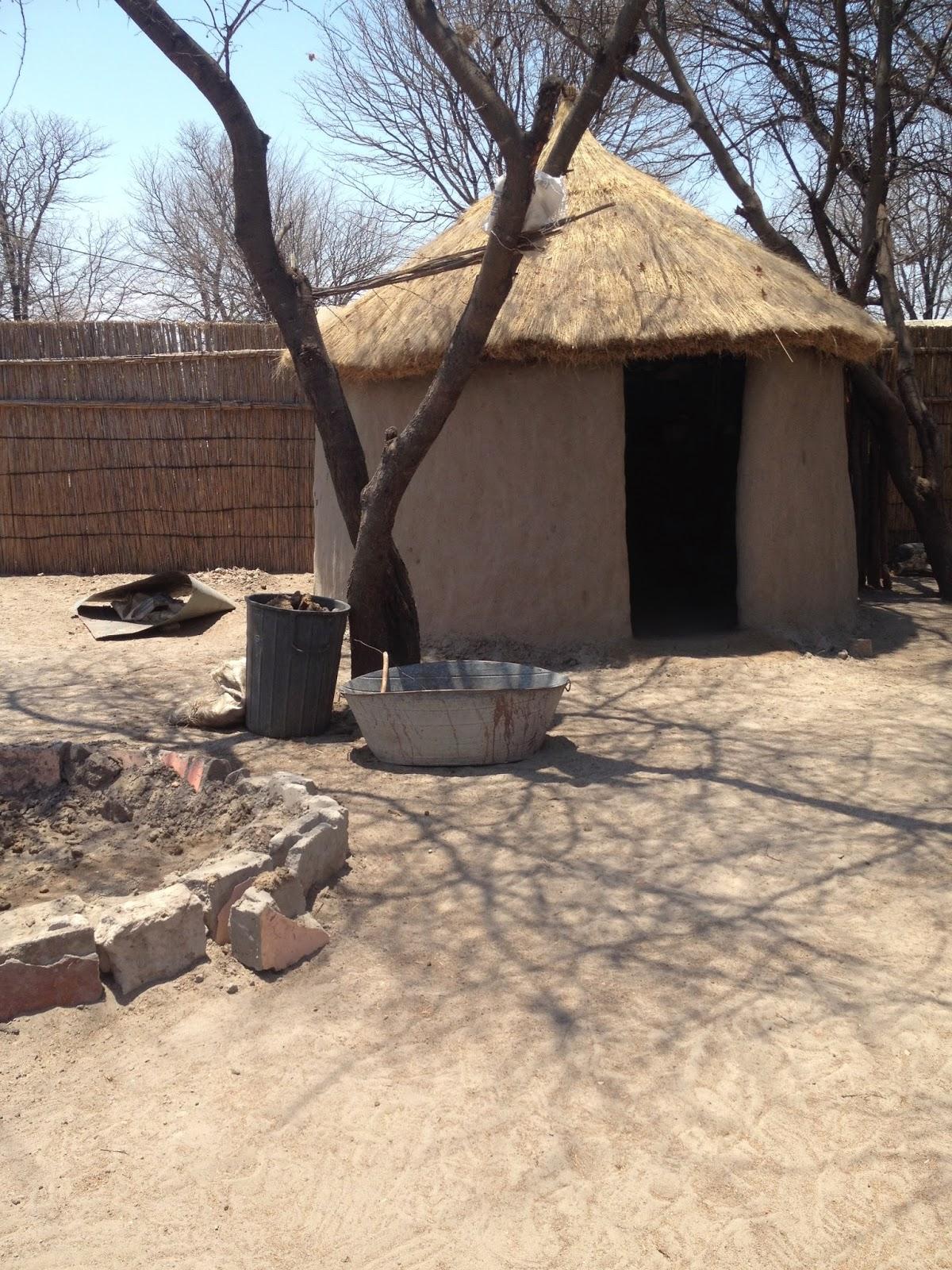 Ullevidsdal: Min månad i Botswana del 1
