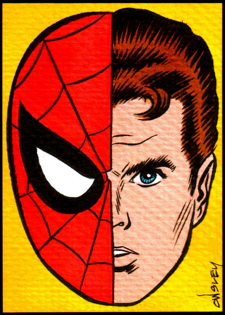 Amazing spider man cartoon peter parker - photo#11