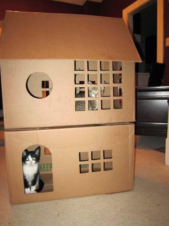 Домики для кошек фото из картона