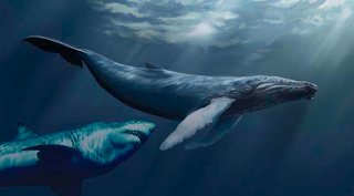 Thriller Central: Megalodon - Search for the Dinosaur Shark Real Ocean Trenches