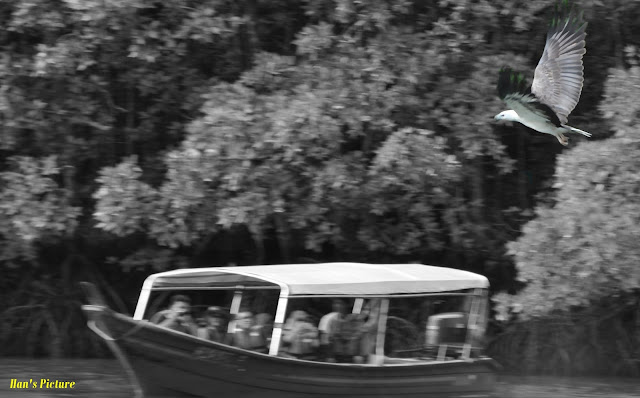 Gambar Abstrak Percutian Langkawi Dan Cameron Highland