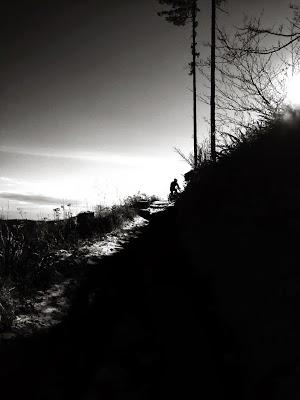 CF Winter Sun