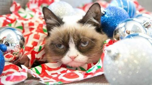 grumpy-cat-christmas-aubrey-plaza