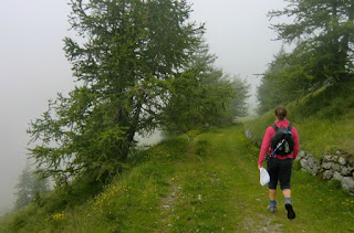Descending from Fort des Mille Fourches to the road of Authion