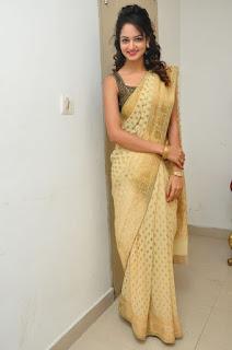 Shaniv in Saree Lovely Pics Tall Beauty