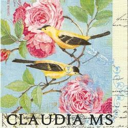 CLAUDIA MS