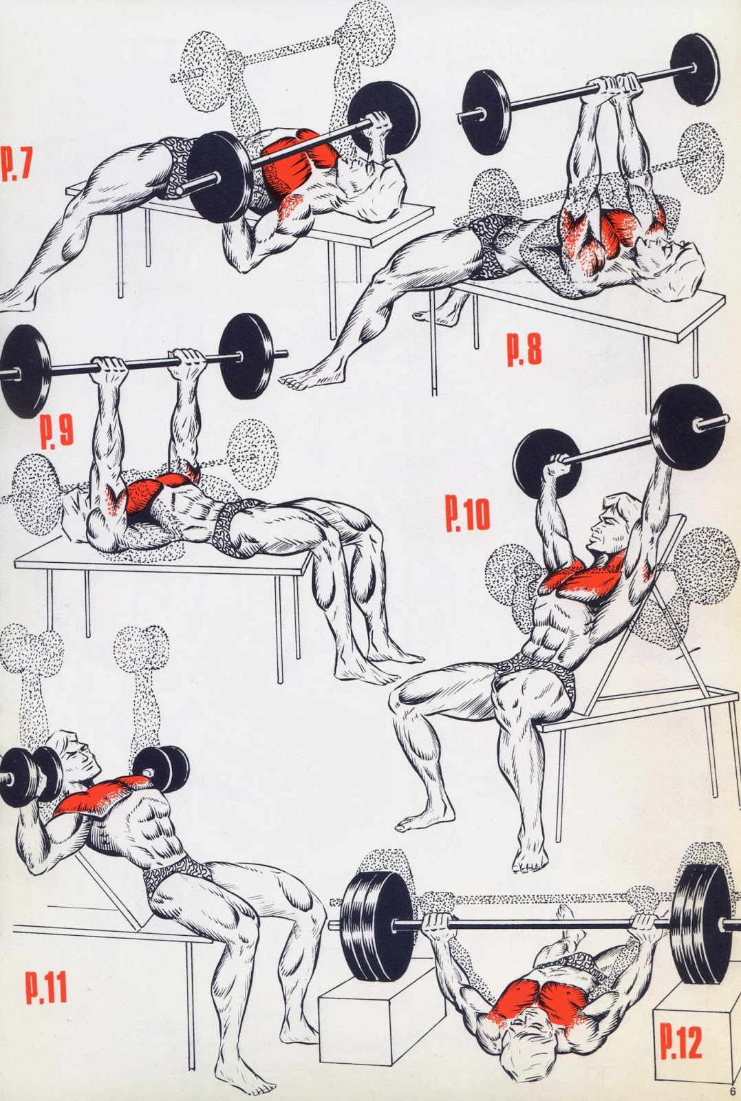 Упражнения для мышц в домашних условиях без гантелей 170